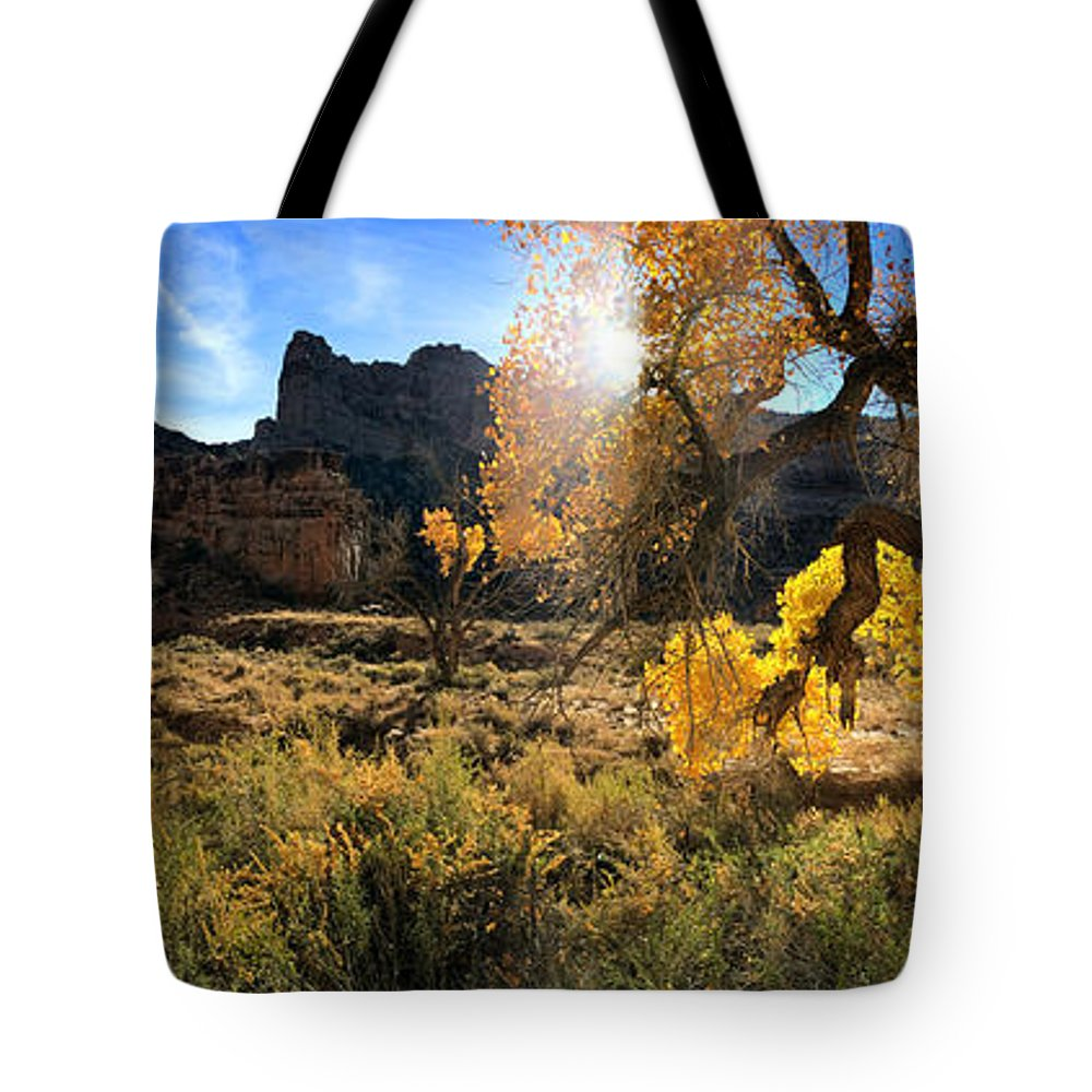 Buckhorn Wash Tote Bag featuring the photograph Cottonwoods In Buckhorn Wash 4055 by Ron Brown Photography