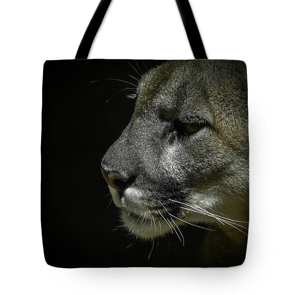 Mountain Lion Tote Bag featuring the photograph Cougar by Ernie Echols