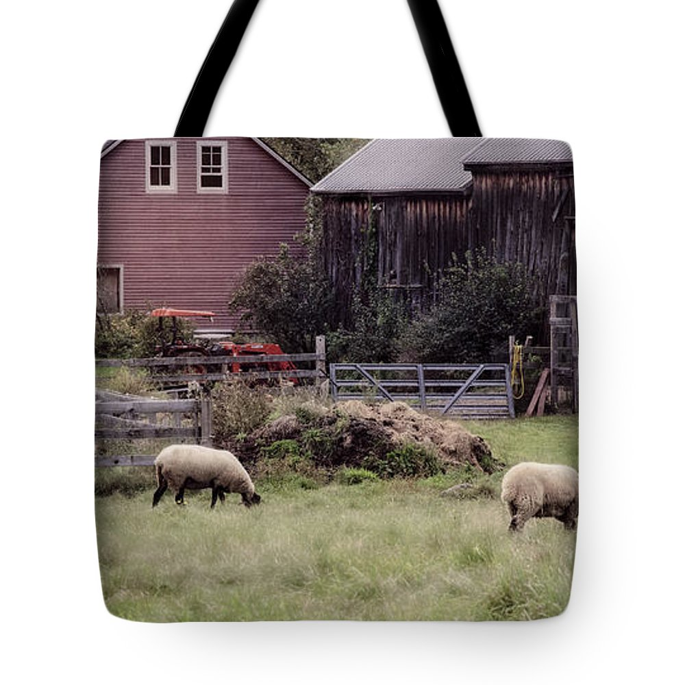 Maine Tote Bag featuring the photograph Counting Sheep by Lisa Bryant