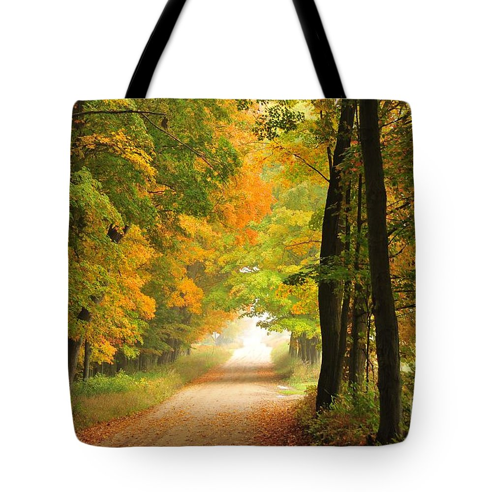 Autumn Tote Bag featuring the photograph Country Road In Autumn by Terri Gostola