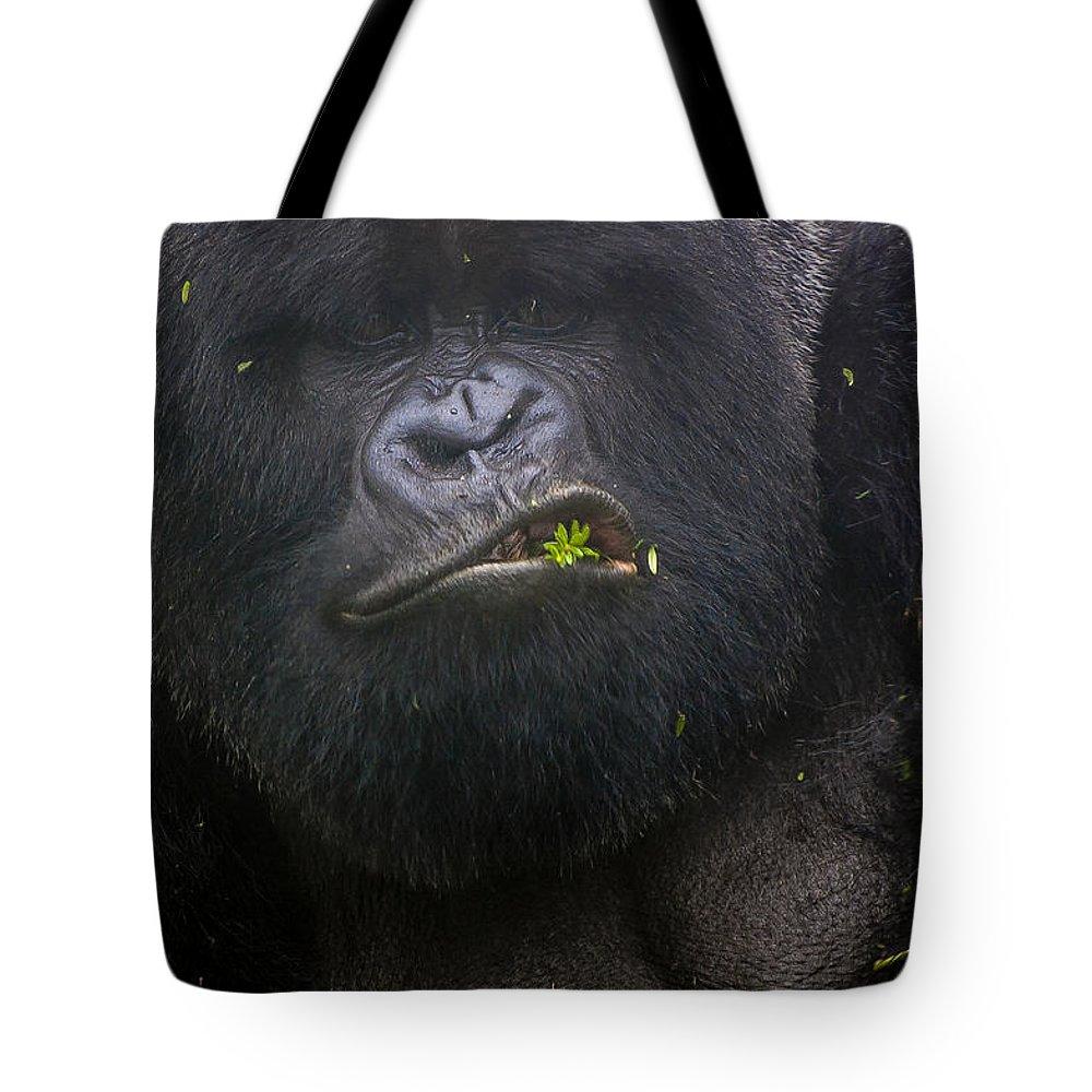 Rwanda Tote Bag featuring the photograph Cover Shot by Paul Weaver