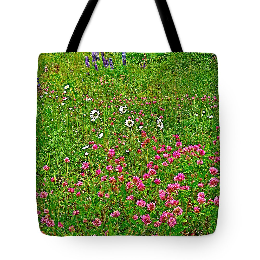 Cow Clover And Ox-eye Daisies On Campobello Island Tote Bag featuring the photograph Cow Clover And Ox-eye Daisies On Campobello I by Ruth Hager