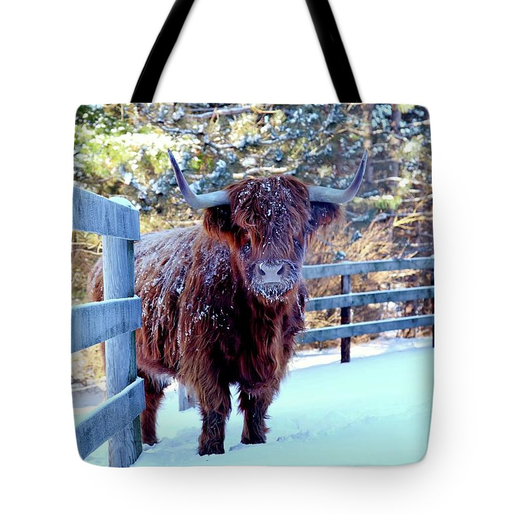 Snow Tote Bag featuring the photograph Cow In Snow by Driftless Studio