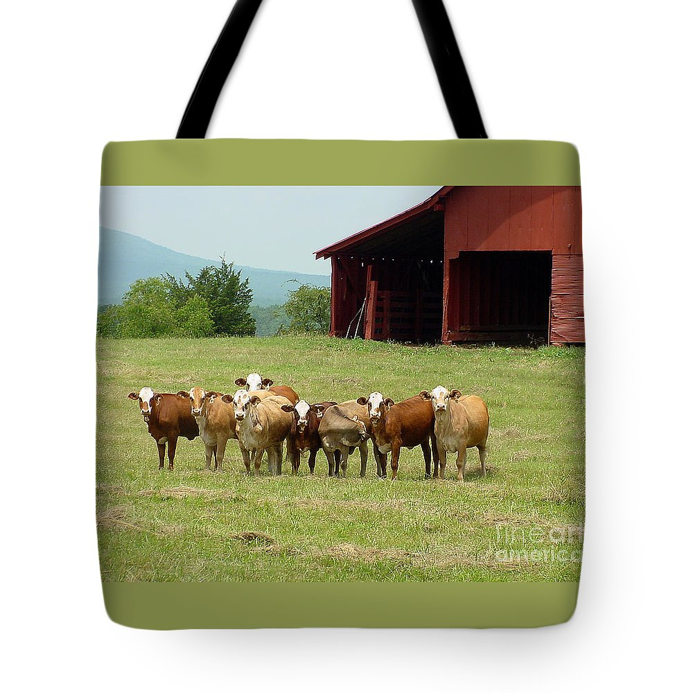 Cow Tote Bag featuring the photograph Cows8918 by Gary Gingrich Galleries