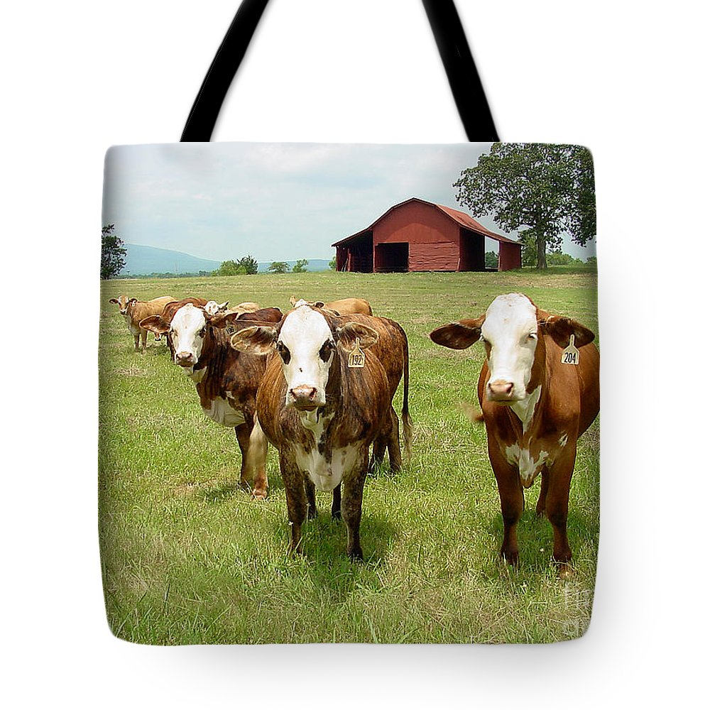 Cow Tote Bag featuring the photograph Cows8931 by Gary Gingrich Galleries