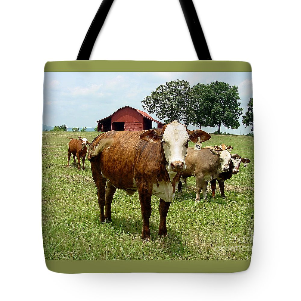Cow Tote Bag featuring the photograph Cows8945 by Gary Gingrich Galleries