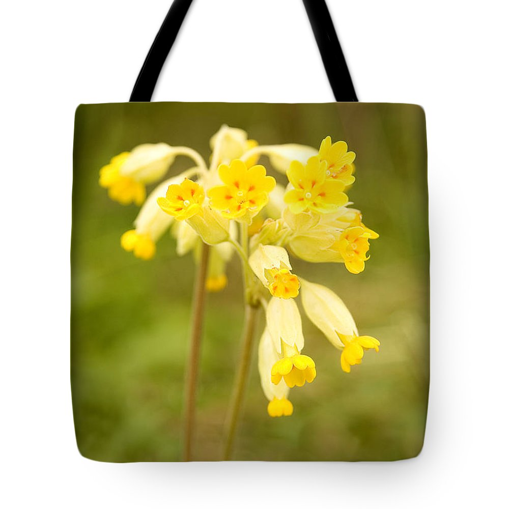 Cowslip Tote Bag featuring the photograph Cowslip  Primula Veris by Liz Leyden