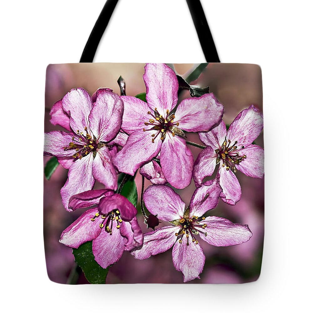 Tree Tote Bag featuring the photograph Crabapple Blossom by Marcia Colelli
