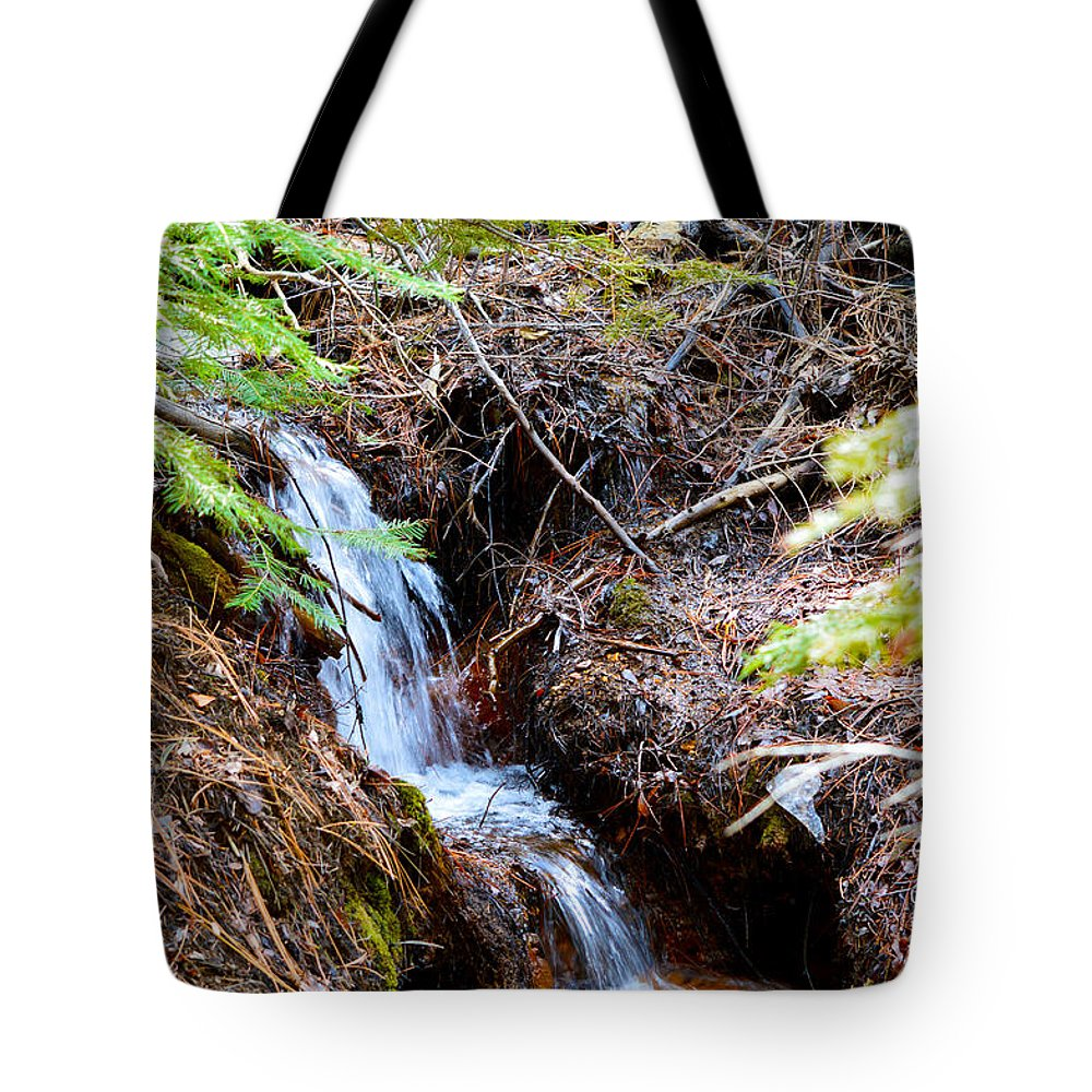 Nevada Tote Bag featuring the photograph Creeks Fall by Brent Dolliver