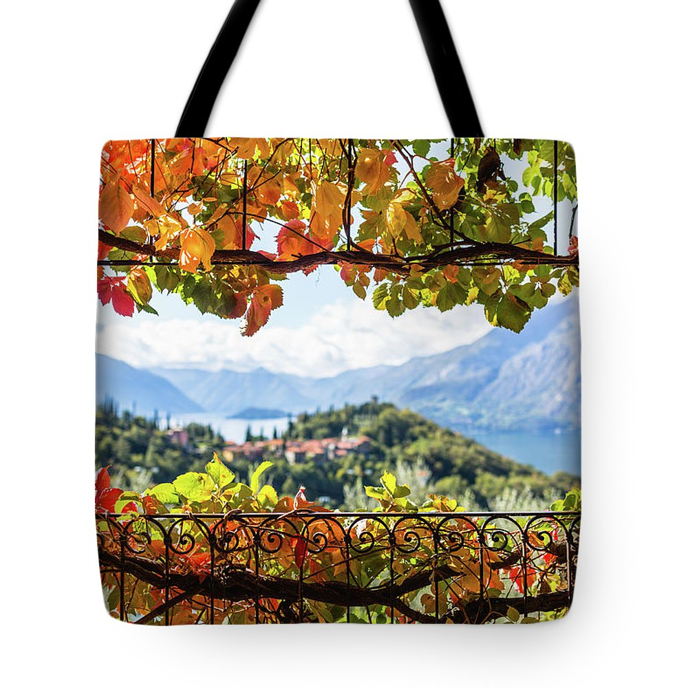 Scenics Tote Bag featuring the photograph Creeper In Autumn by Deimagine
