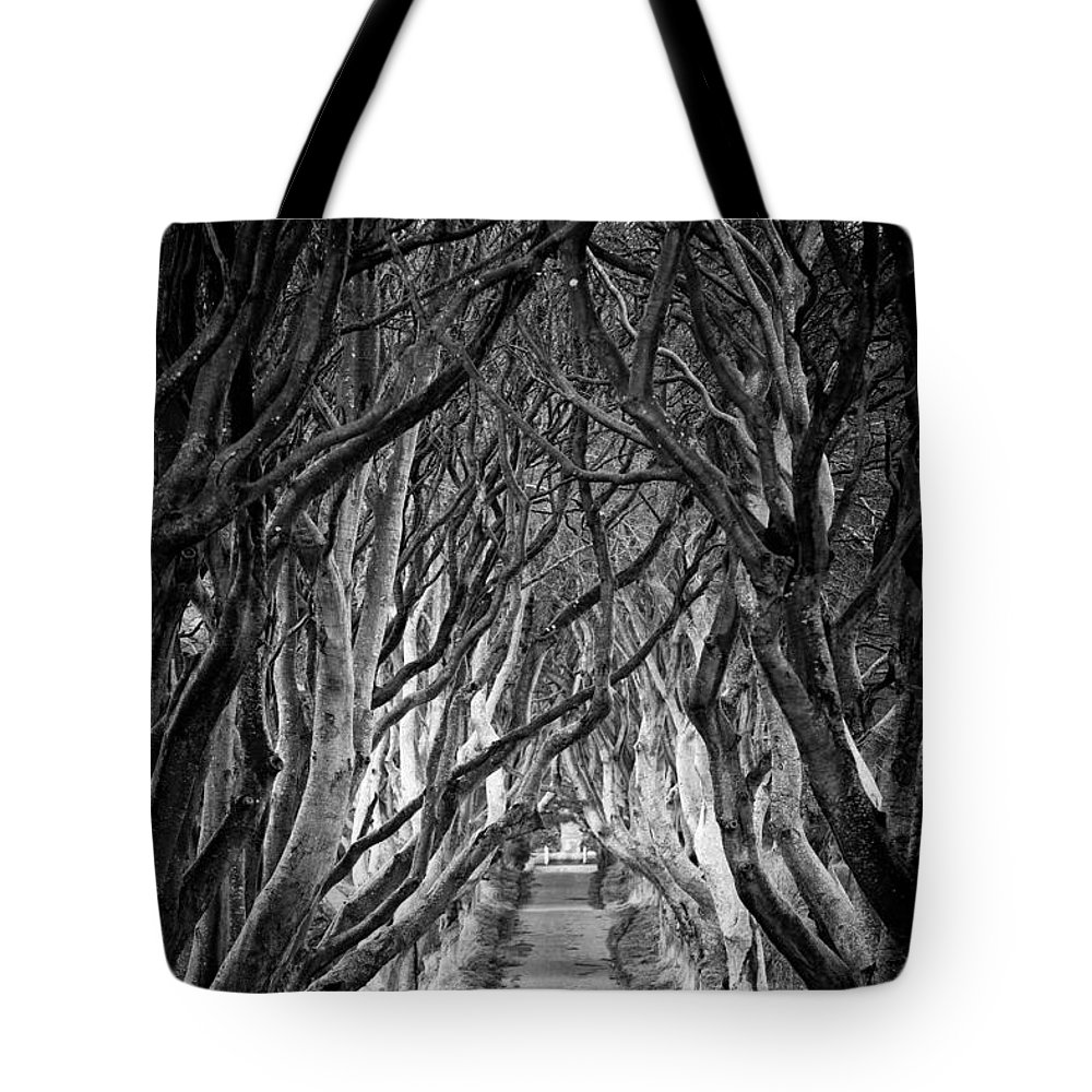 Dark Hedges Tote Bag featuring the photograph Creepy Dark Hedges by Nigel R Bell