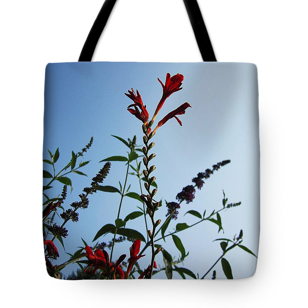 Crocosmia Lucifer Tote Bag featuring the photograph Crocosmia Sky by MTBobbins Photography