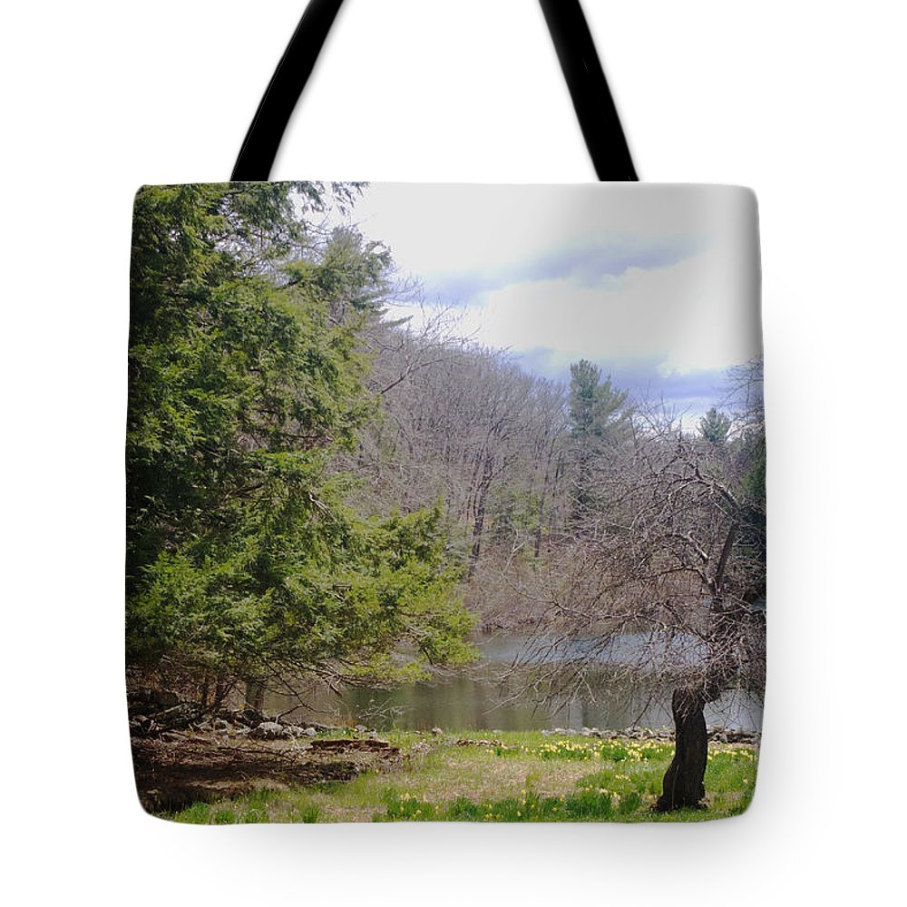 Tree Tote Bag featuring the photograph Crooked Tree by Ray Konopaske