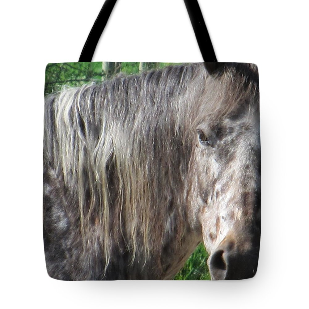 Horse Tote Bag featuring the photograph Cross Breed Horse by Tina M Wenger