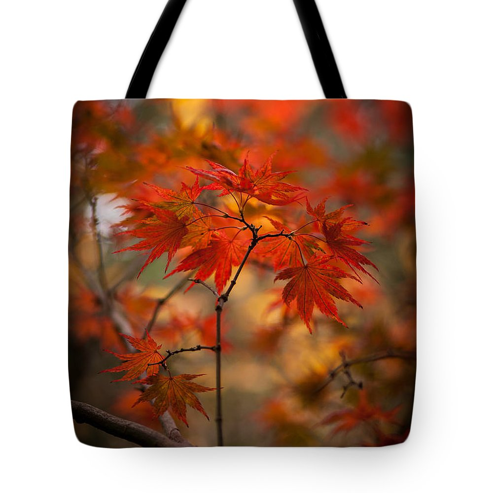 Acer Tote Bag featuring the photograph Crown Of Fire by Mike Reid