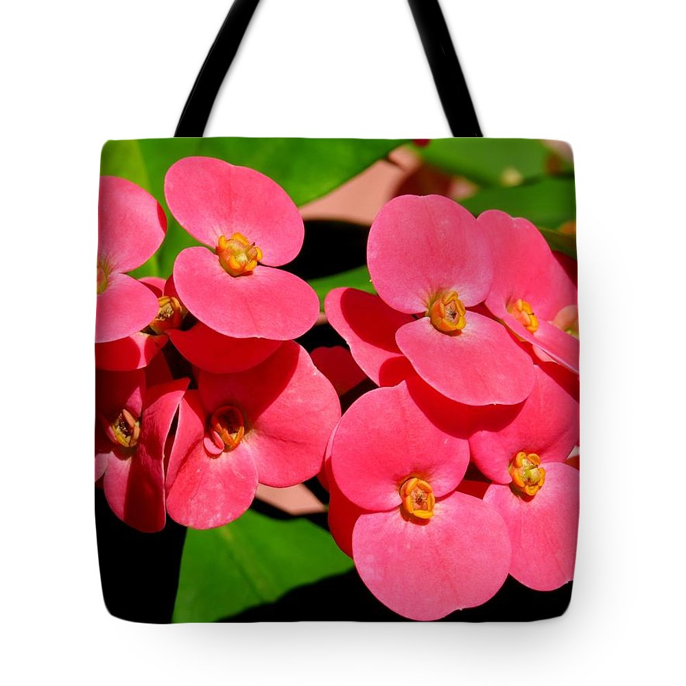Crown Of Thorns Tote Bag featuring the photograph Crown Of Thorns by Zina Stromberg