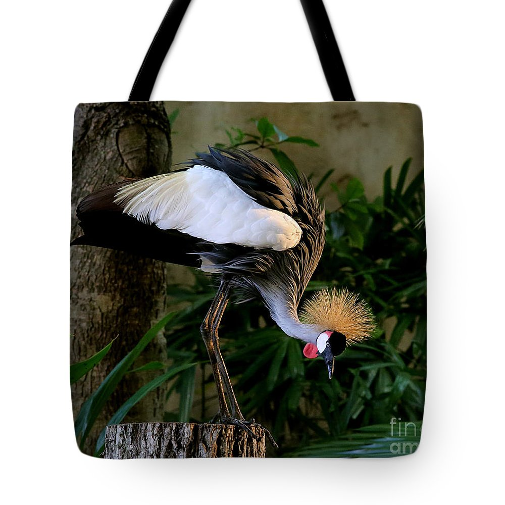 Grey Tote Bag featuring the photograph Crowned Crane by Rebecca Morgan