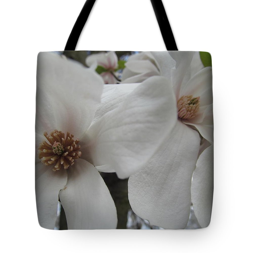 Flower Tote Bag featuring the photograph Cultivar Double Magnolia Blossoms by Tina M Wenger