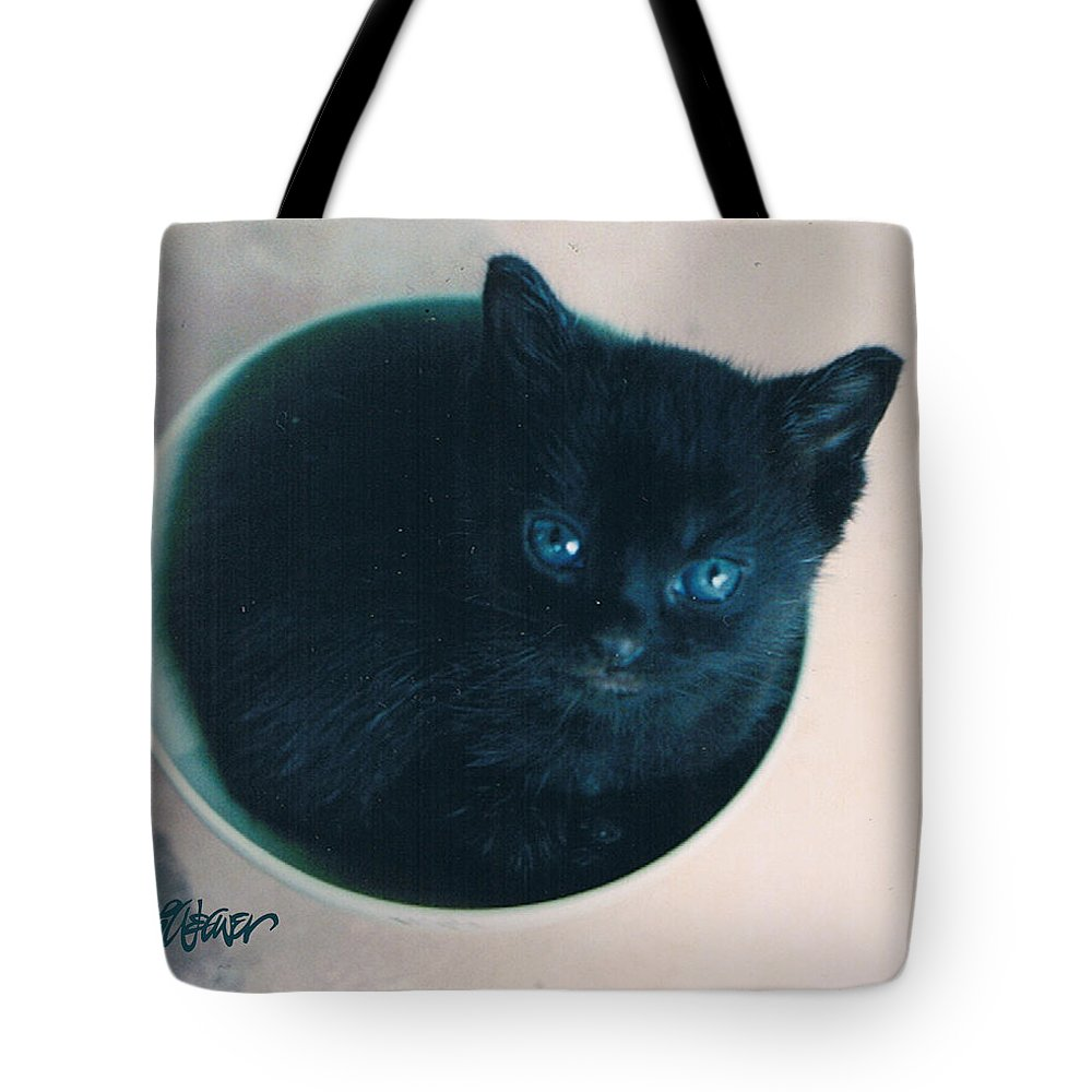 Cat Tote Bag featuring the photograph Cup O'kitty by Seth Weaver
