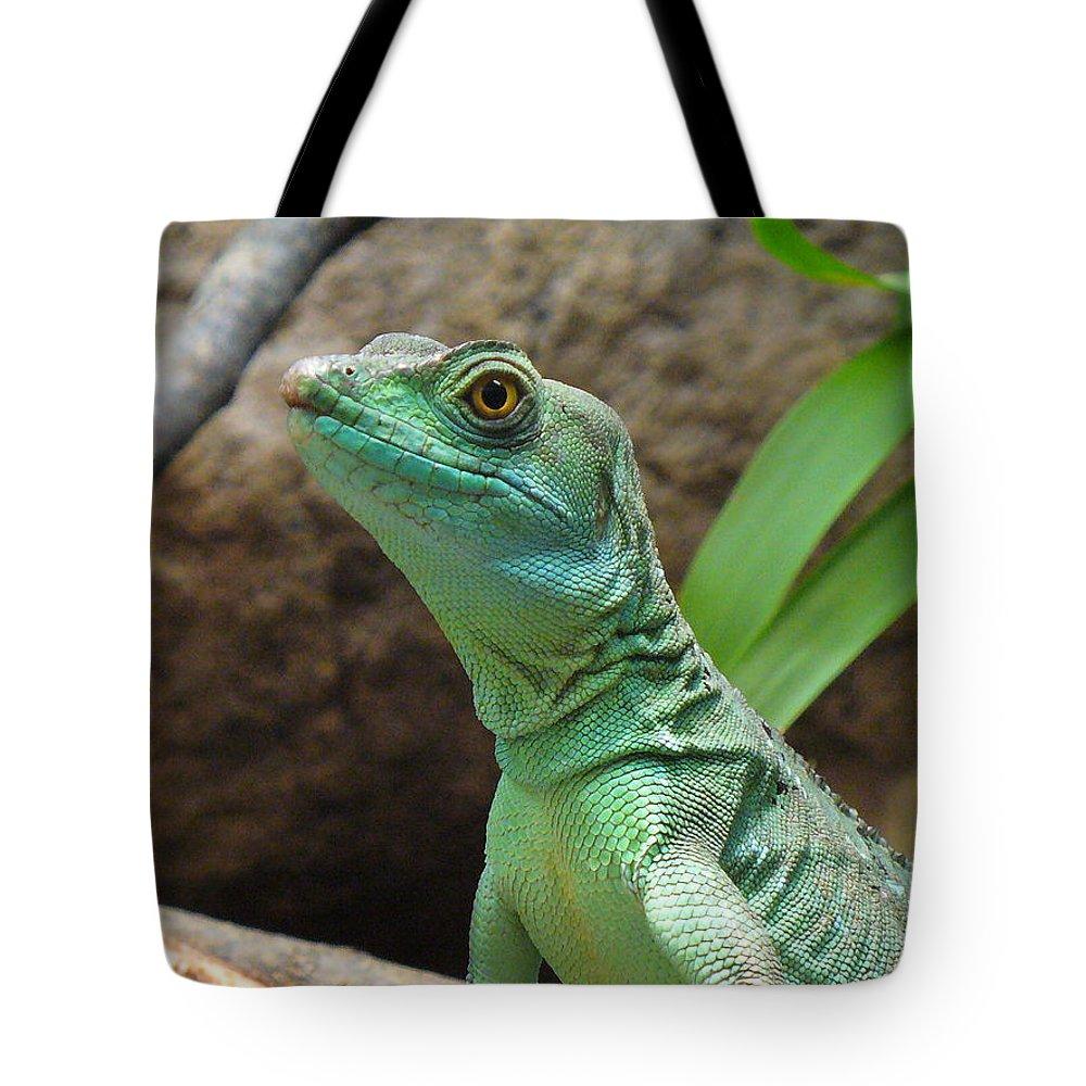 Lizard Tote Bag featuring the photograph Curious Gaze by Lingfai Leung