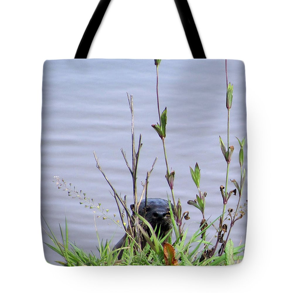 Mammal Tote Bag featuring the photograph Curious Otter by I'ina Van Lawick