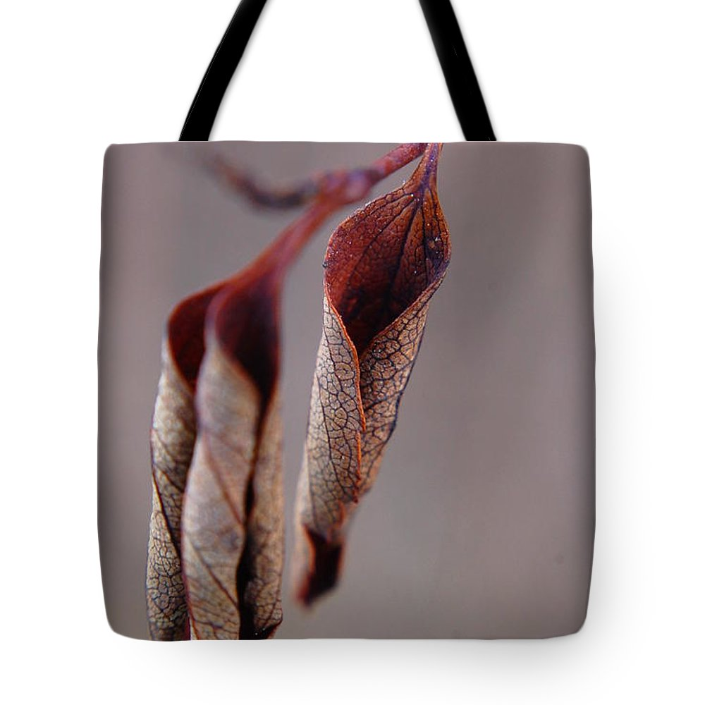 Leaf Tote Bag featuring the photograph Curled by Alea Photography