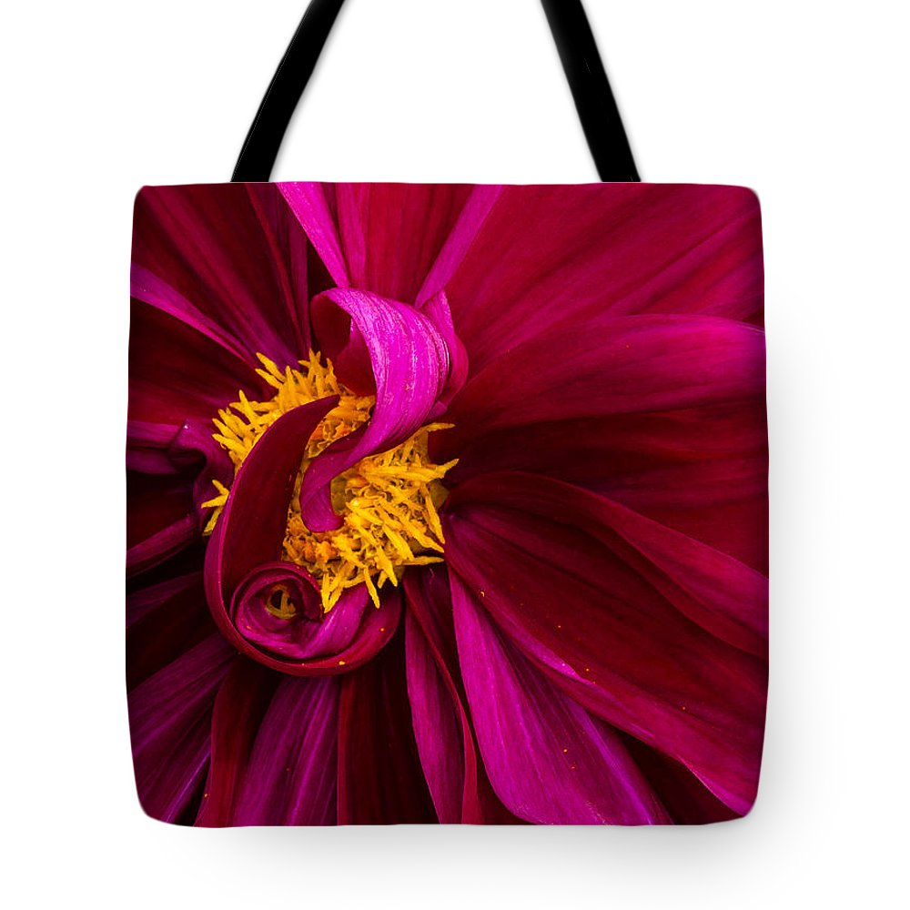 Dahlia Tote Bag featuring the photograph Curley by Jean Noren