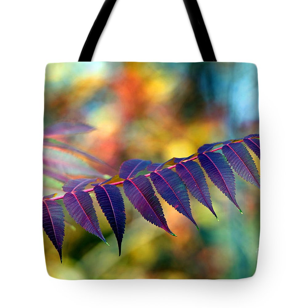 Autumn Tote Bag featuring the photograph Cutting Through by Andrea Kollo