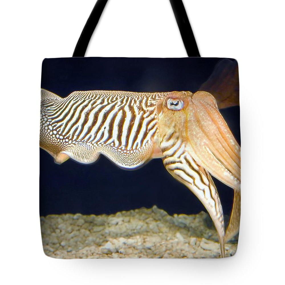 Monterey Bay Aquarium Tote Bag featuring the photograph Cuttlefish 1 by Dawn Eshelman