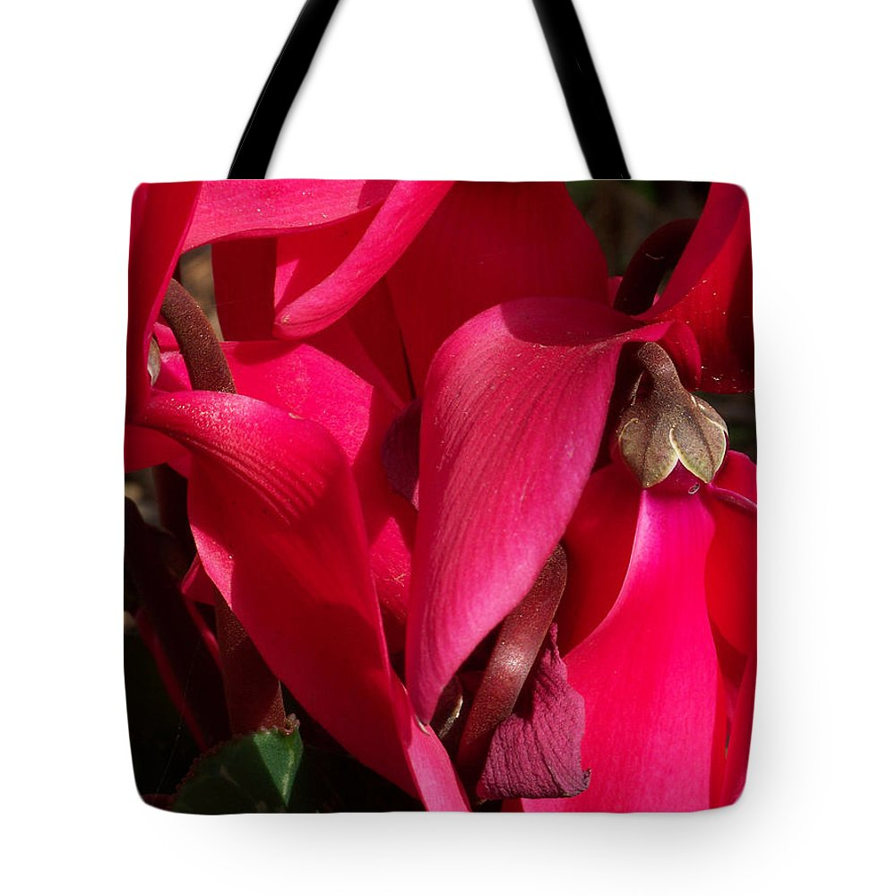 Flowers Tote Bag featuring the photograph Cyclamen by Kathy McClure
