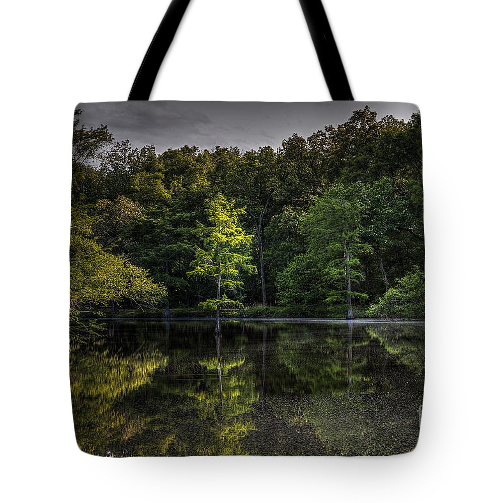 2014 Tote Bag featuring the photograph Cypress At Dusk by Larry Braun