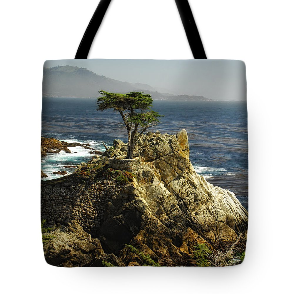 Cypress Tree Tote Bag featuring the photograph Cypress by Donna Blackhall