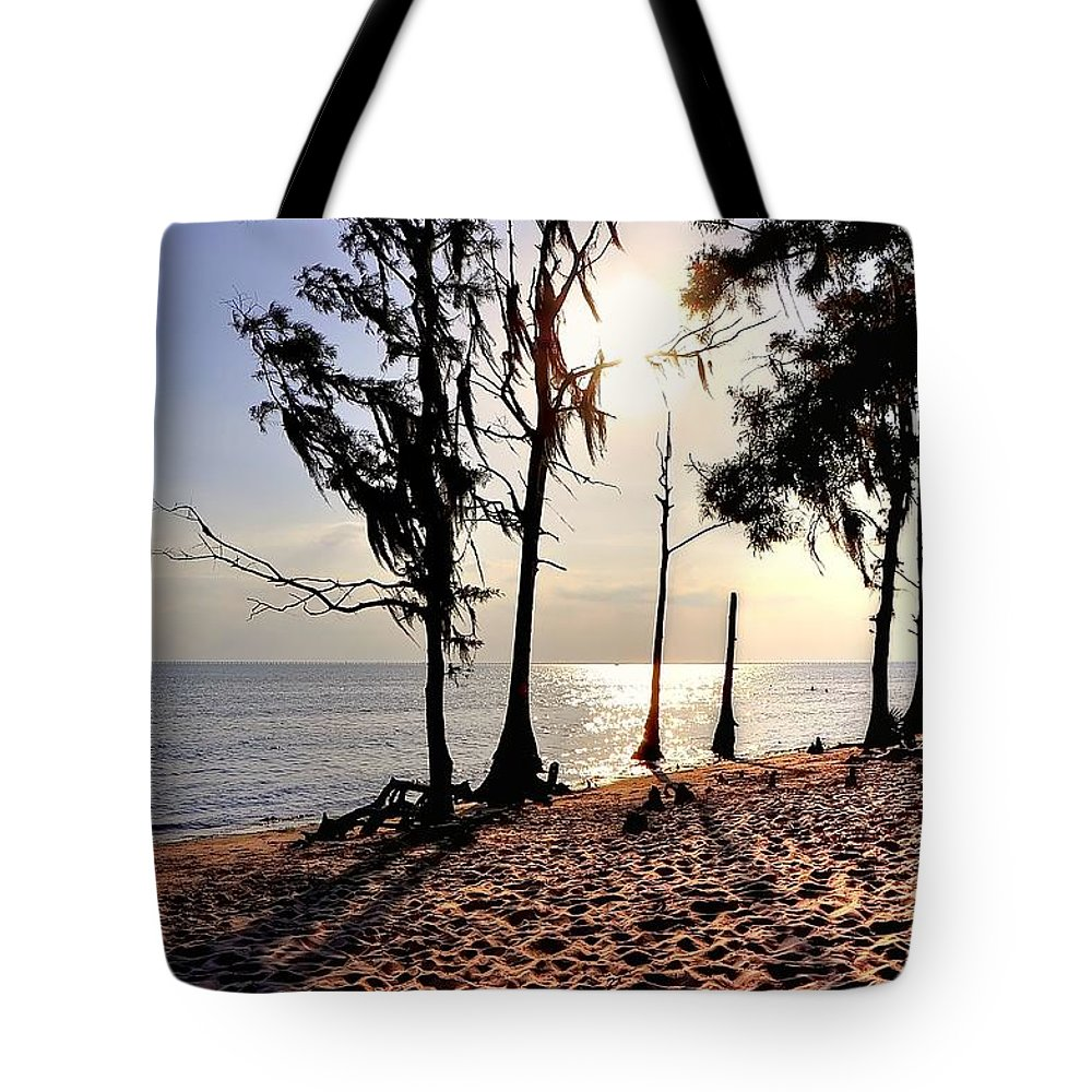 Cypress Tote Bag featuring the photograph Cypress Shore by Charlotte Schafer