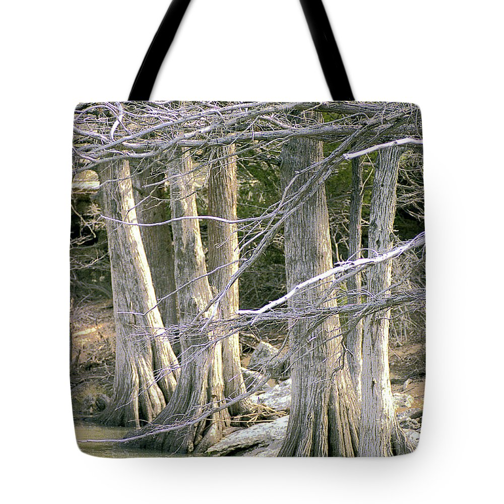 Trees Tote Bag featuring the photograph Cypress Trees by Jim Smith