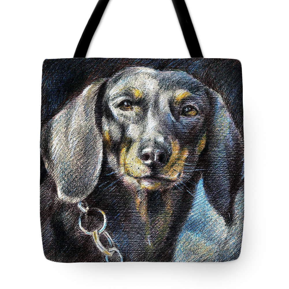 Dachshund Dog Print Canvas Tote Bag featuring the drawing Dachshund by Daliana Pacuraru