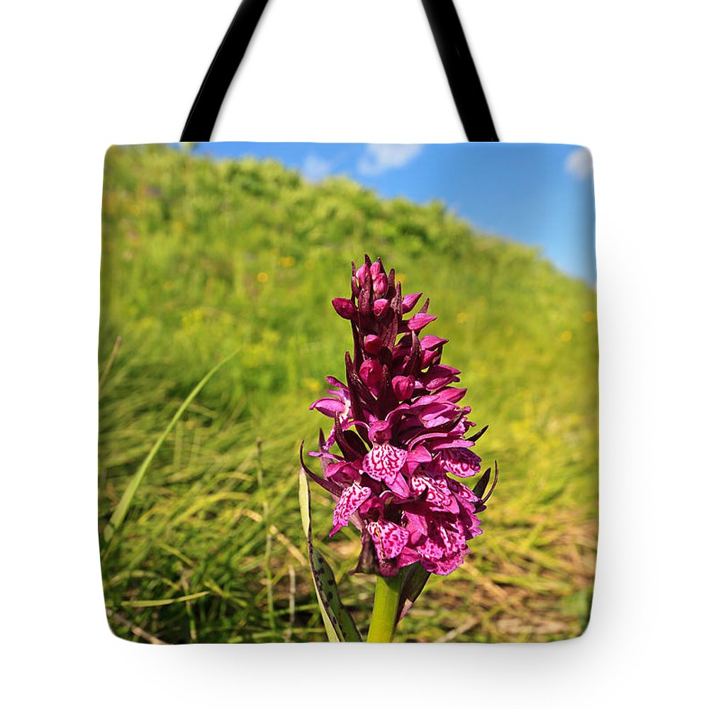 Plant Tote Bag featuring the photograph Dactylorhiza Orchid by Antonio Scarpi