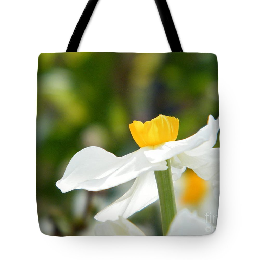 Daffodil In Bloom Tote Bag featuring the photograph Daffodil In Profile by Cheryl Hardt Art