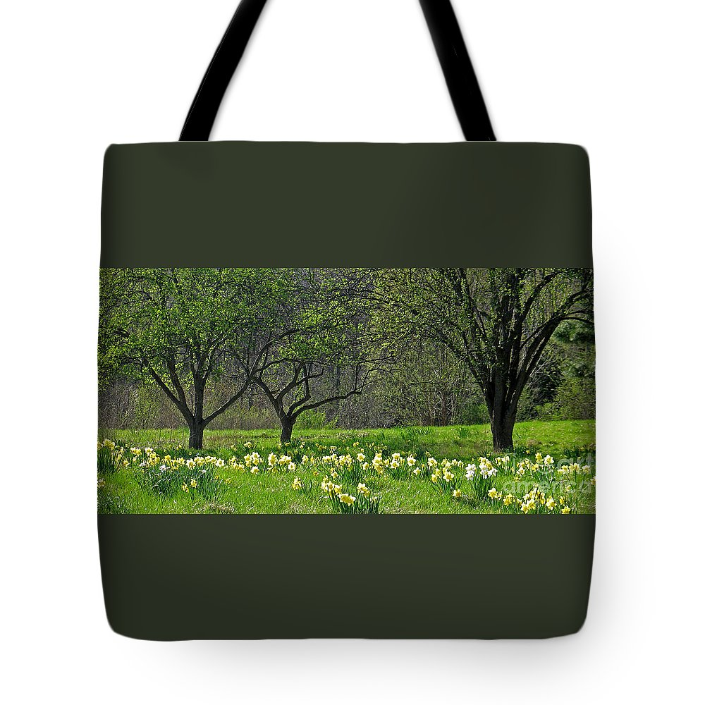 Spring Tote Bag featuring the photograph Daffodil Meadow by Ann Horn