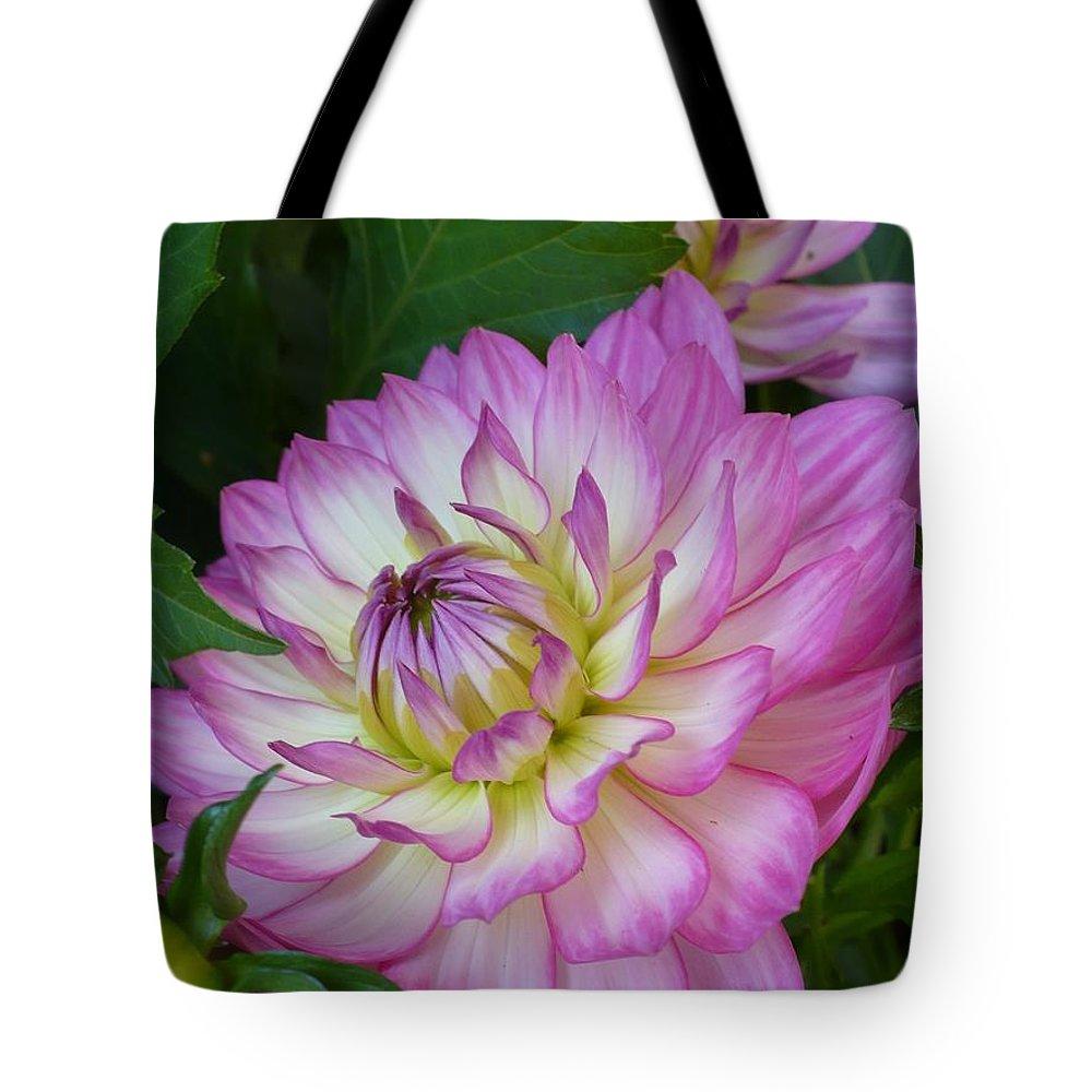 Dahlia Tote Bag featuring the photograph Dahalia by Nicki Bennett