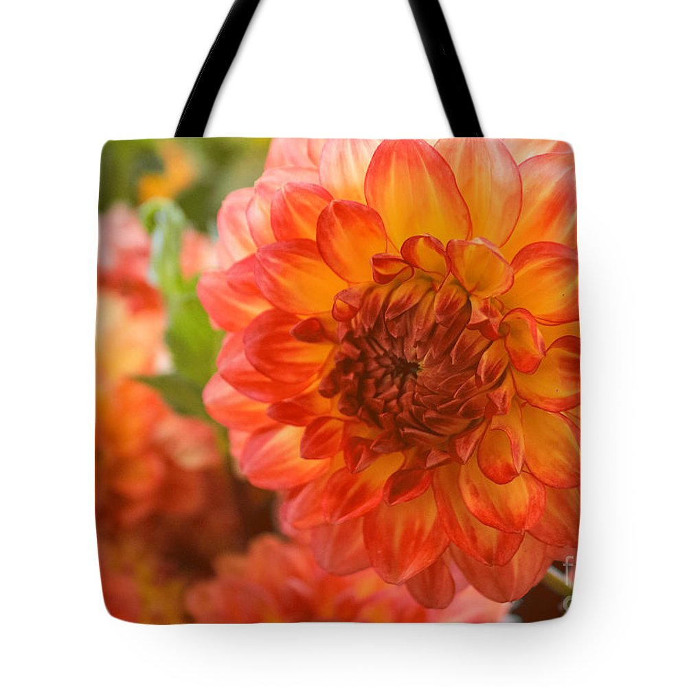 Dahlia Tote Bag featuring the photograph Dahlia Bright by Arlene Carmel