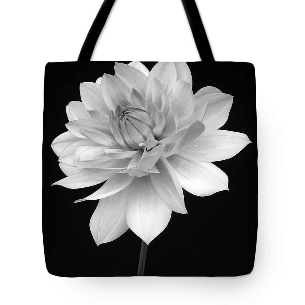 Haslemere Tote Bag featuring the photograph Dahlia In Gentle Shades Of Grey by Rosemary Calvert