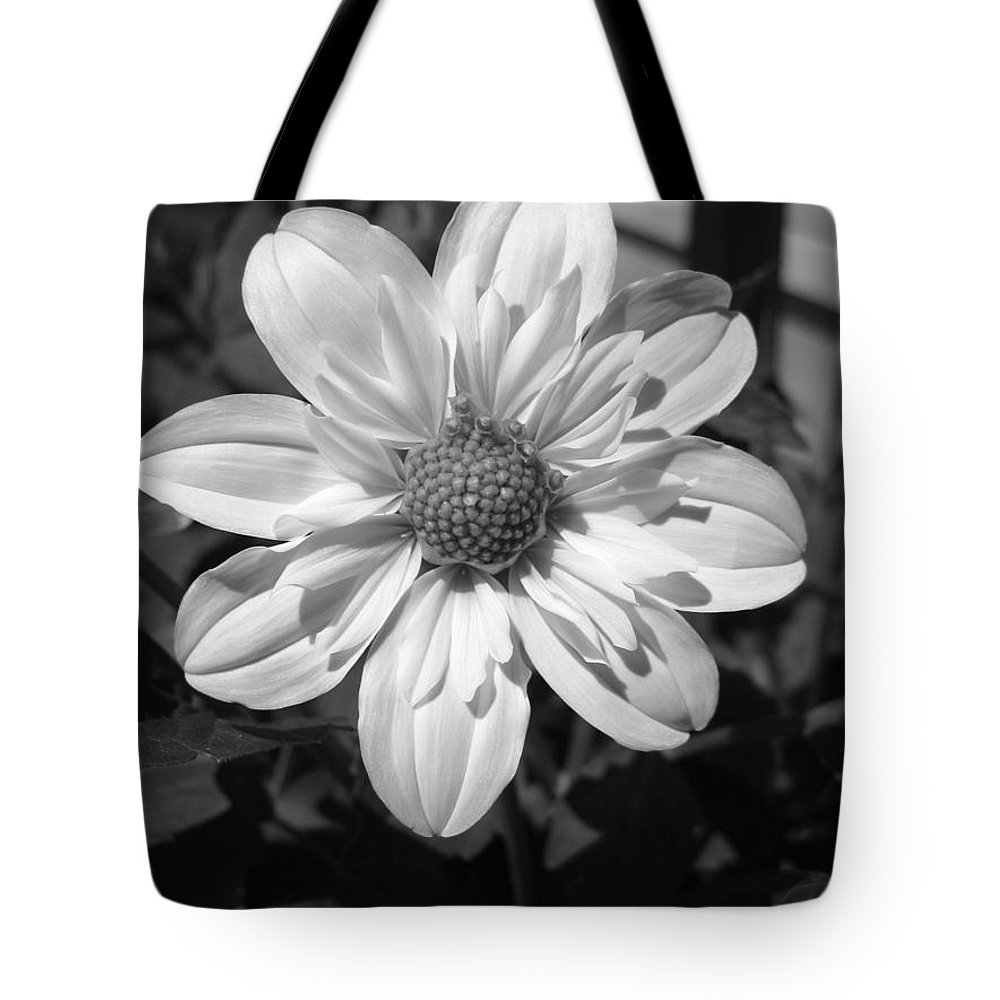 Dahlia Tote Bag featuring the photograph Dahlia Named Alpen Cherub by J McCombie