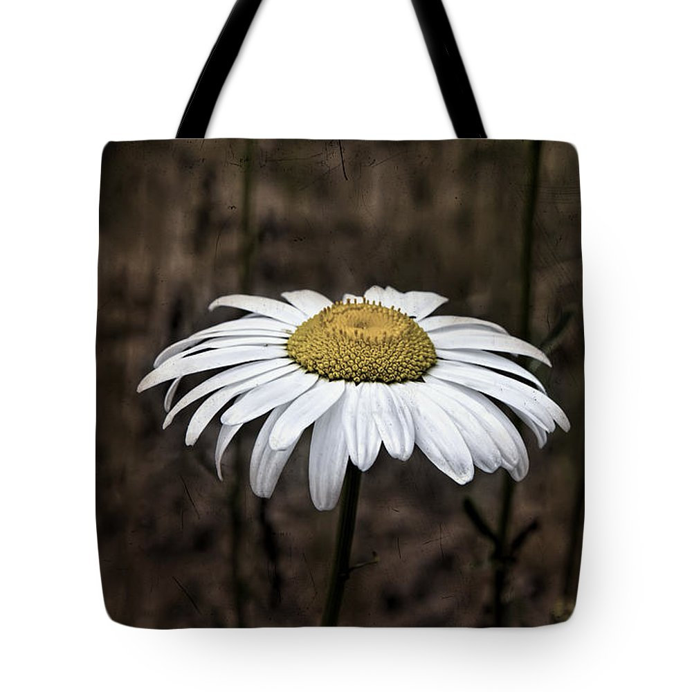 Flower Tote Bag featuring the photograph Daisy by Evie Carrier