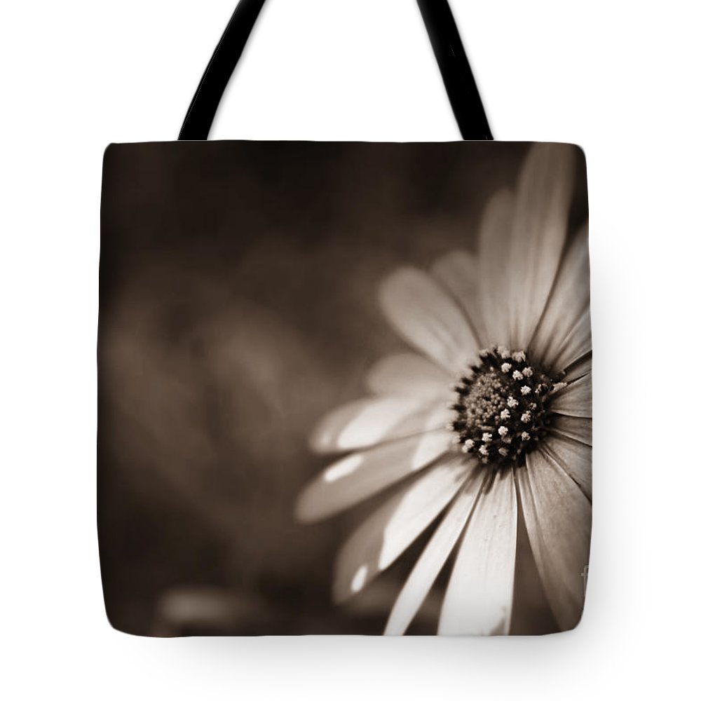 Daisy Shine Tote Bag for Sale by Clare Bevan