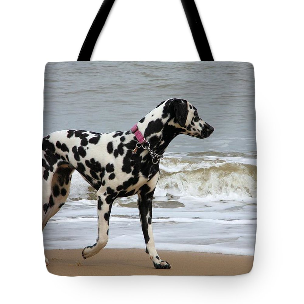 Dalmatian By The Sea Tote Bag featuring the photograph Dalmatian By The Sea by Gordon Auld