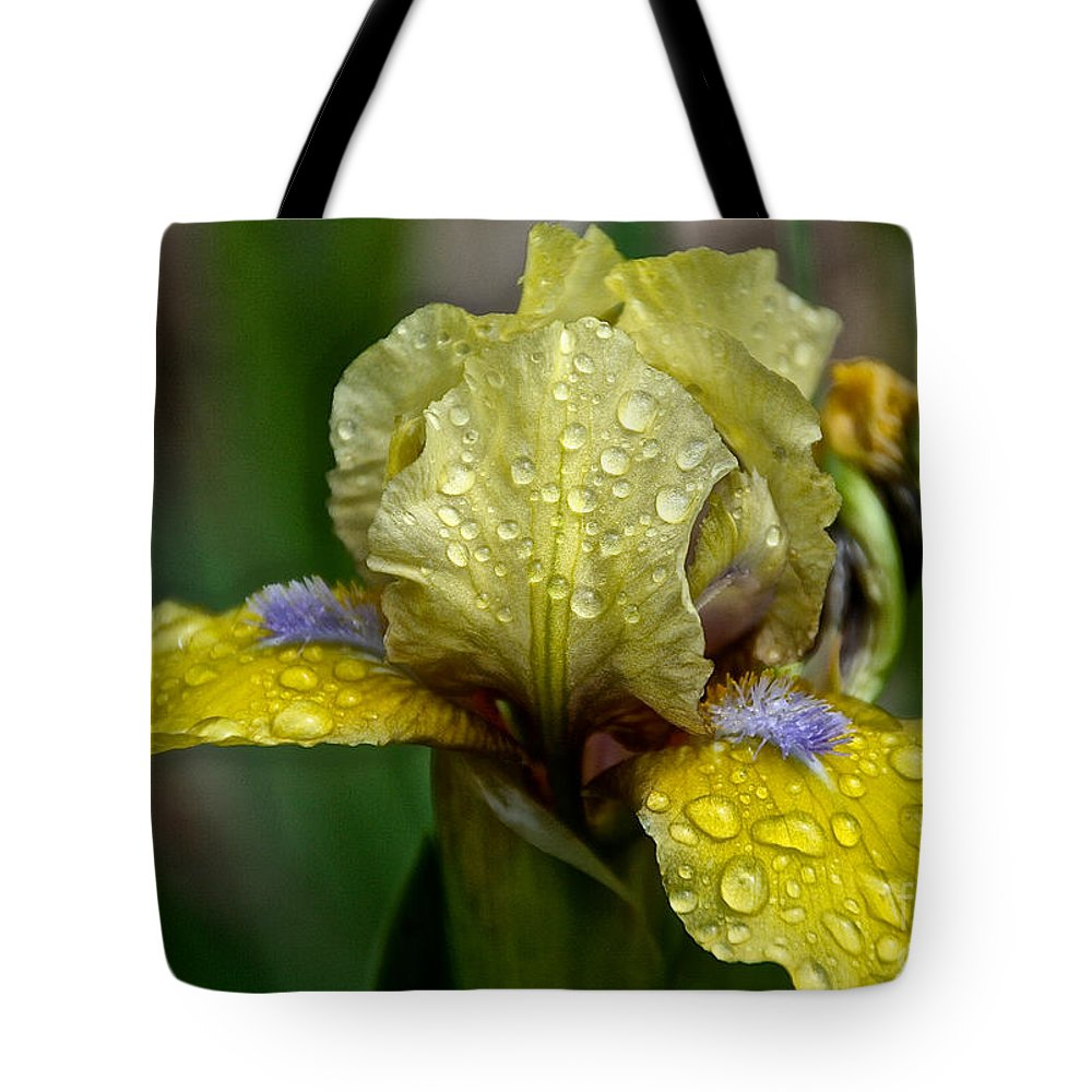 Flower Tote Bag featuring the photograph Damp Bluebeard by Susan Herber