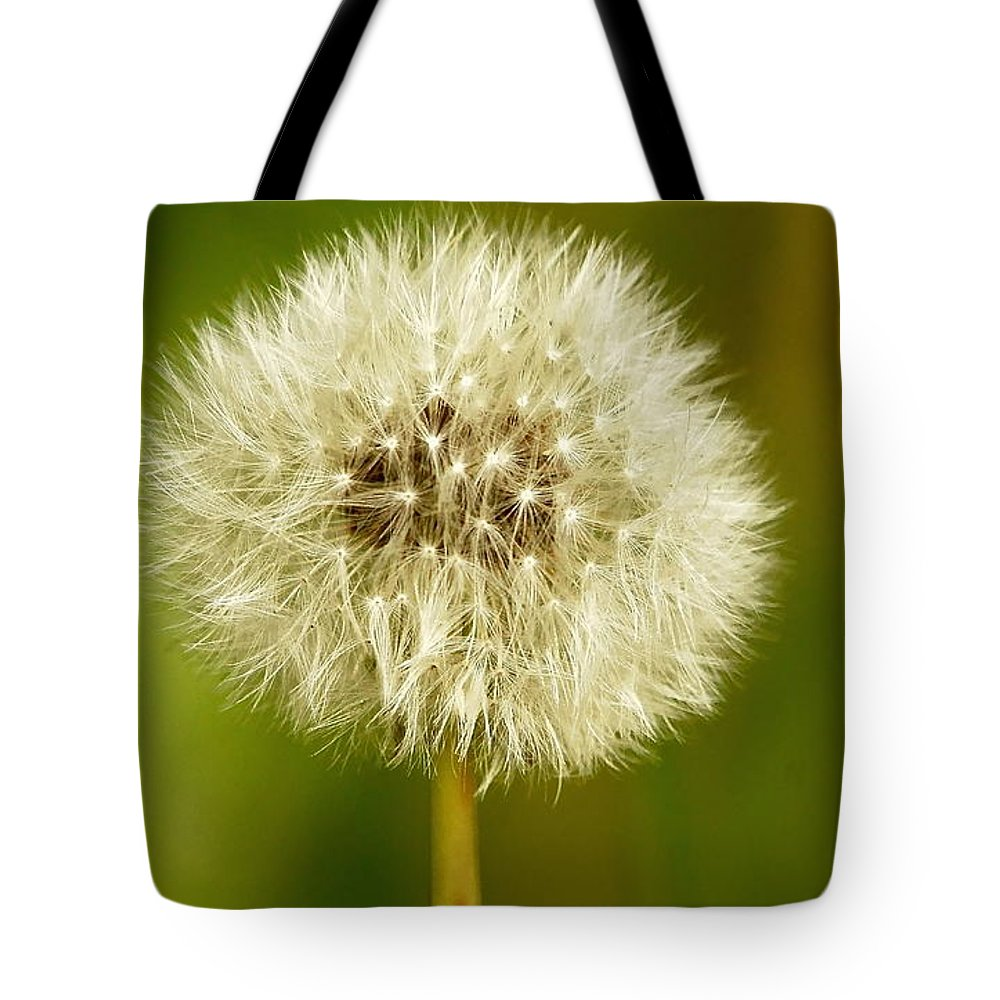 Dandelion Tote Bag featuring the photograph Dandelion by Dave Smith