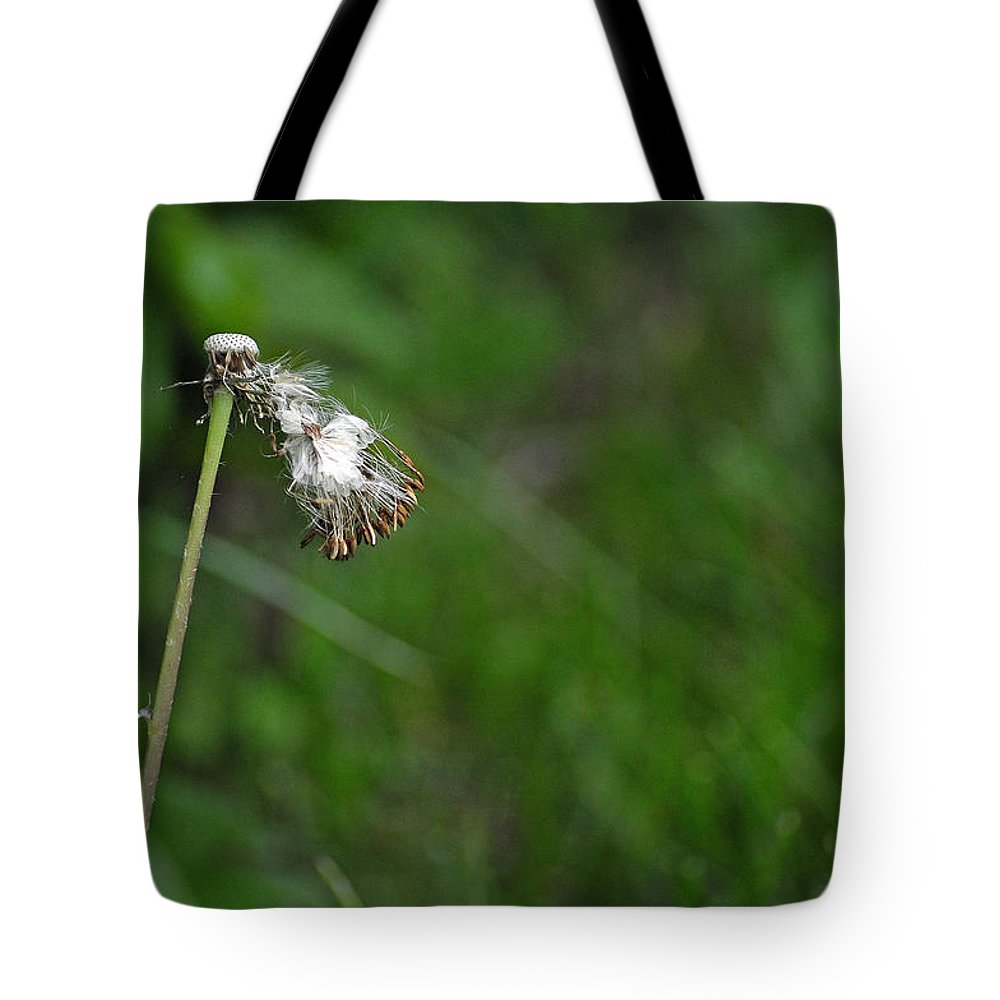 Dandelion In The Wind Tote Bag featuring the photograph Dandelion In The Wind by Lisa Phillips