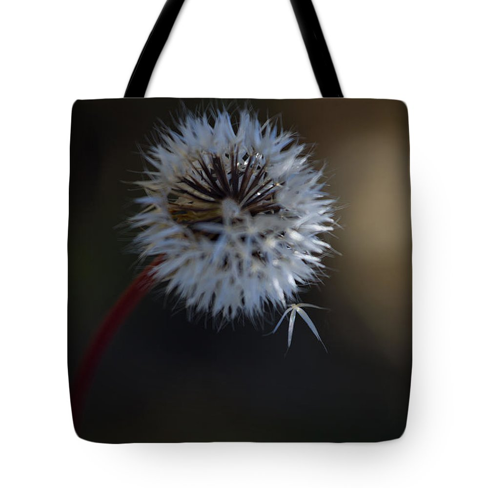 Dandelion Tote Bag featuring the photograph Dandelion by Roger Mullenhour