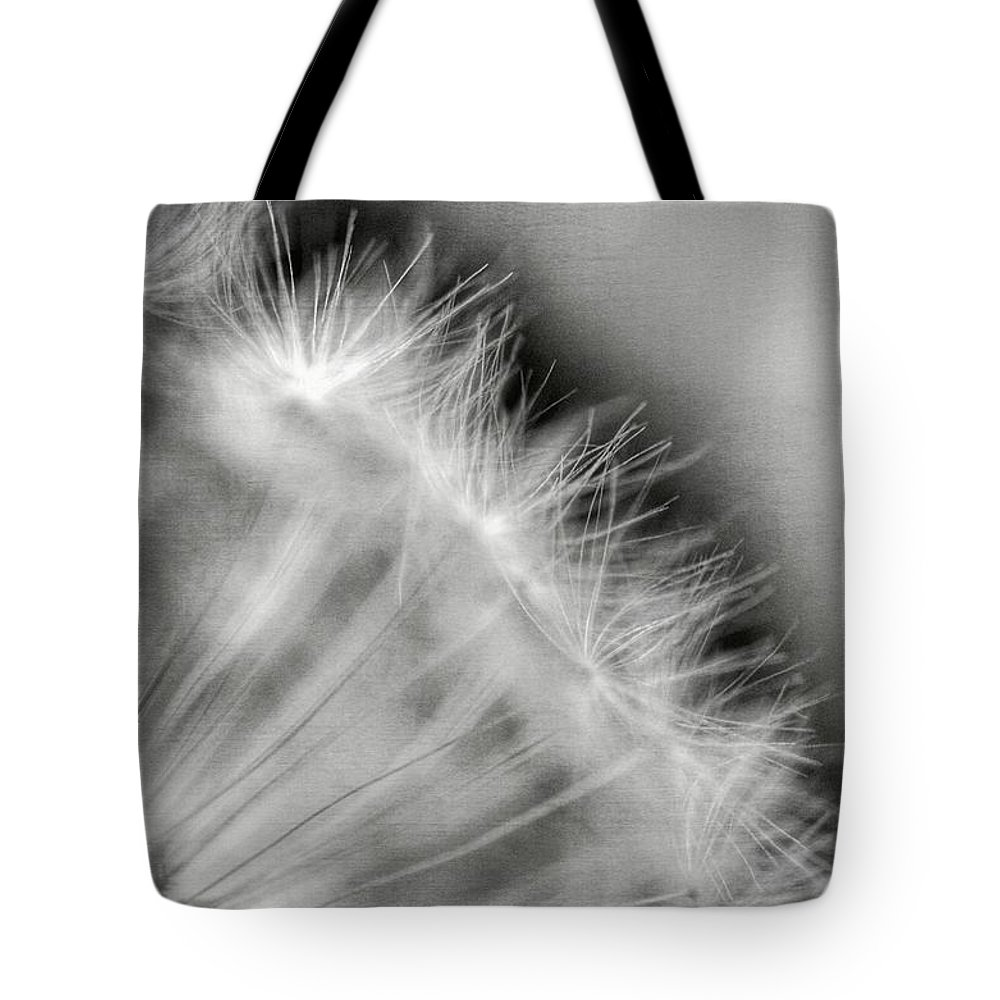 Dandelion Tote Bag featuring the photograph Dandelion Seeds - Black And White by Marianna Mills